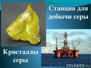 Самый же интересный вид минерального сырья Мирового океана - это знаменитые желе