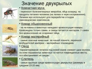 Значение двукрылых Комнатная муха - переносит болезнетворных микробов, яйца аска