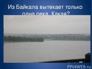 Из Байкала вытекает только одна река. Какая?