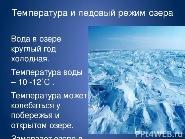 Температура и ледовый режим озера Вода в озере круглый год холодная. Температура воды – 10 -12˚С . Температура может колебаться у побережья и открытом озере. Замерзает озеро в конце декабря, но и вскрывается поздно – в мае. Почему? Льды плавают до к…