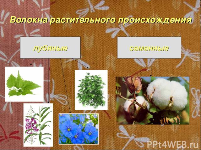 Волокна растительного происхождения лубяные семенные