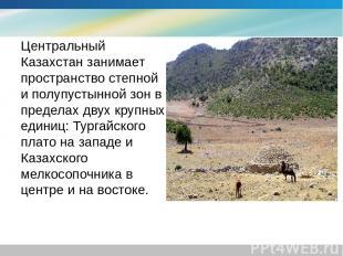 Центральный Казахстан занимает пространство степной и полупустынной зон в предел