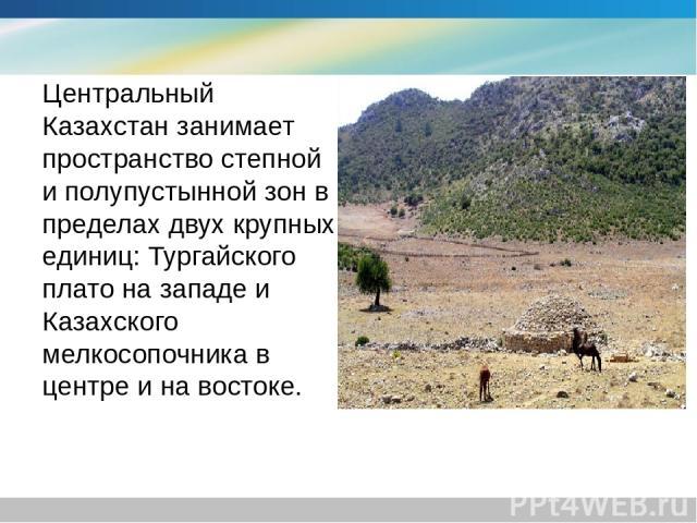 Центральный Казахстан занимает пространство степной и полупустынной зон в пределах двух крупных единиц: Тургайского плато на западе и Казахского мелкосопочника в центре и на востоке.