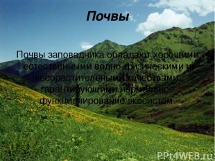 Почвы Почвы заповедника обладают хорошими естественными водно-физическими и лесо