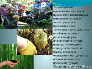 Экологическое просвещение населения , проводимое заповедником, направлено на защ