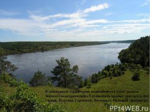В заповедную территорию вклиниваются узкие заливы Зейского водохранилища.Крупней