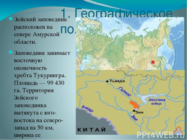 1. Географическое положение Зейский заповедник расположен на севере Амурской области. Заповедник занимает восточную оконечность хребтаТукурингра. Площадь— 99 430 га. Территория Зейского заповедника вытянута с юго-востока на северо-запад на 50км, …