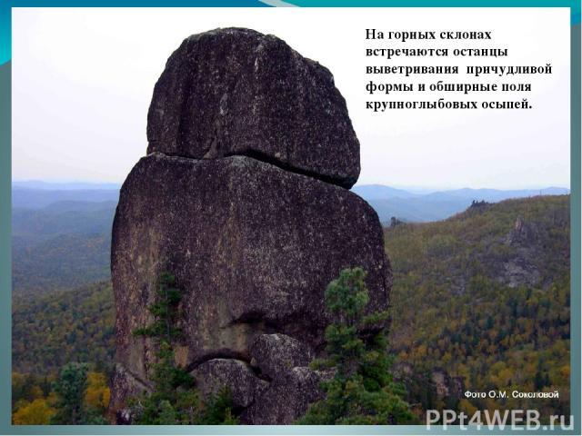 На горных склонах встречаются останцы выветривания причудливой формы и обширные поля крупноглыбовых осыпей.