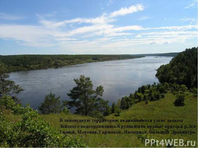 В заповедную территорию вклиниваются узкие заливы Зейского водохранилища.Крупнейшие правые притоки р.Зеи – Гилюй, Мотовая, Гармакан, Лючеркан, Большая Эракингра.