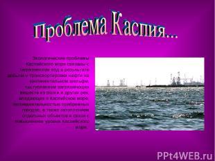 Экологические проблемы Каспийского моря связаны с загрязнением вод в результате