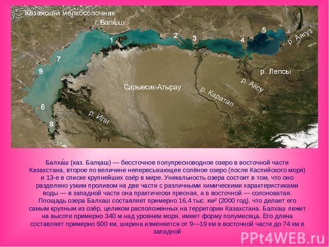 Балха ш (каз. Балқаш) — бессточное полупресноводное озеро в восточной части Казахстана, второе по величине непересыхающее солёное озеро (после Каспийского моря) и 13-е в списке крупнейших озёр в мире. Уникальность озера состоит в том, что оно раздел…