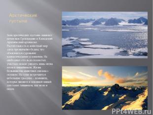 Арктические пустыни Зона арктических пустынь занимает почти всю Гренландию и Кан