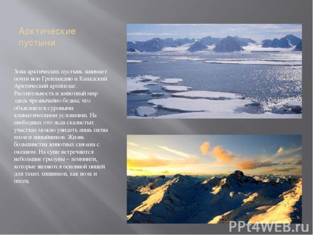 Арктические пустыни Зона арктических пустынь занимает почти всю Гренландию и Канадский Арктический архипелаг. Растительность и животный мир здесь чрезвычайно бедны, что объясняется суровыми климатическими условиями. На свободных ото льда скалистых у…