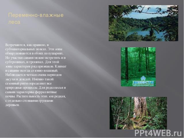 Переменно-влажные леса Встречаются, как правило, в субэкваториальных поясах. Эти зоны обнаруживаются в обоих полушариях. Но участки саванн можно встретить и в субтропиках, и тропиках. Для этой зоны характерен ряд признаков. Климат в саванне всегда с…
