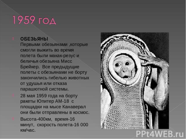 ОБЕЗЬЯНЫ Первыми обезьянами ,которые смогли выжить во время полета были макак-резус и беличья обезьяна Мисс Брейкер. Все предыдущие полеты с обезьянами не борту закончились гибелью животных от удушья или отказа парашютной системы. 28 мая 1959 года …