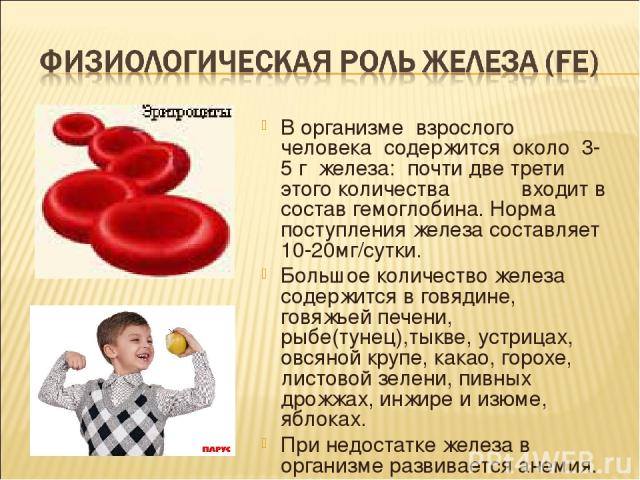В организме взрослого человека содержится около 3-5 г железа: почти две трети этого количества входит в состав гемоглобина. Норма поступления железа составляет 10-20мг/сутки. Большое количество железа содержится в говядине, говяжьей печени, рыбе(тун…
