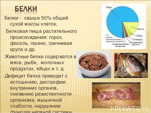 Белки - свыше 50% общей сухой массы клеток. Белковая пища растительного происхождения: горох, фасоль, пшено, гречневая крупа и др. Животные белки содержатся в мясе, рыбе, молочных продуктах, яйцах и т. д. Дефицит белка приводит к истощению, дистрофи…