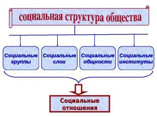 Социальные группы Социальные слои Социальные общности Социальные институты Социа