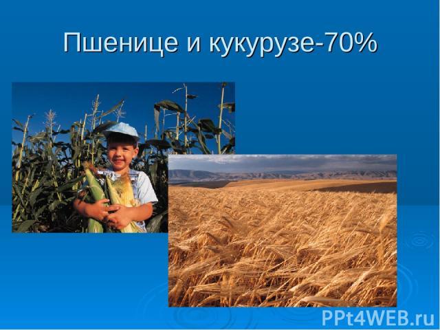 Пшенице и кукурузе-70%