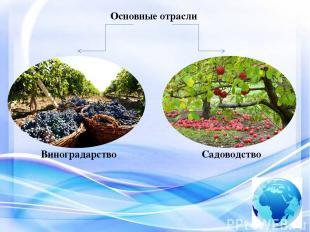 Основные отрасли Виноградство Садоводство