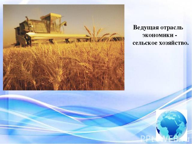 Ведущая отрасль экономики - сельское хозяйство.