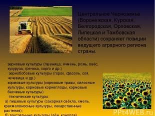 Центральное Черноземье (Воронежская, Курская, Белгородская, Орловская, Липецкая