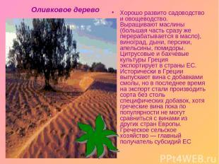 Хорошо развито садоводство и овощеводство. Выращивают маслины (большая часть сра
