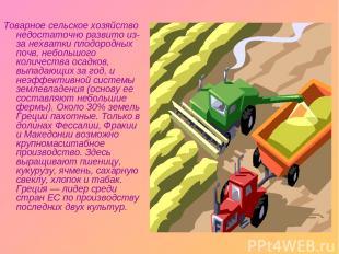 Товарное сельское хозяйство недостаточно развито из-за нехватки плодородных почв
