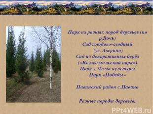 Парк из разных пород деревьев (по р.Вочь) Сад плодово-ягодный (ус. Аверино) Сад