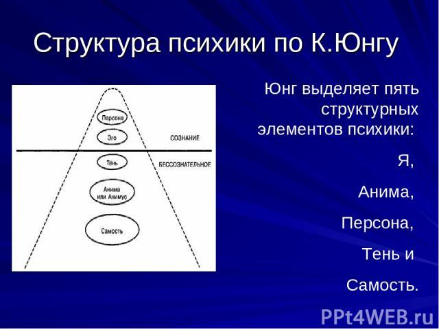 Структура психики по К.Юнгу Юнг выделяет пять структурных элементов психики: Я, Анима, Персона, Тень и Самость.
