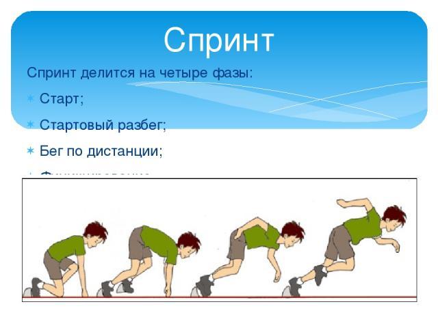 Спринт делится на четыре фазы: Старт; Стартовый разбег; Бег по дистанции; Финиширование. Спринт