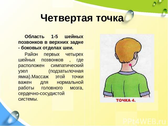 Четвертая точка Область 1-5 шейных позвонков в верхних задне - боковых отделах шеи. Район первых четырех шейных позвонков , где расположен симпатический узел (подзатылочная ямка).Массаж этой точки важен для нормальной работы головного мозга, сердечн…