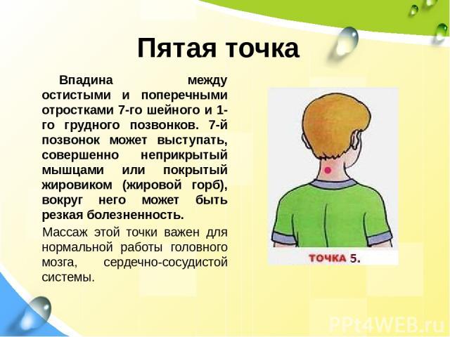 Пятая точка Впадина между остистыми и поперечными отростками 7-го шейного и 1-го грудного позвонков. 7-й позвонок может выступать, совершенно неприкрытый мышцами или покрытый жировиком (жировой горб), вокруг него может быть резкая болезненность. Мас…