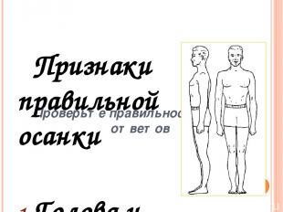 Признаки неправильной осанки голова выдвинута за продольную ось тела (опущенная