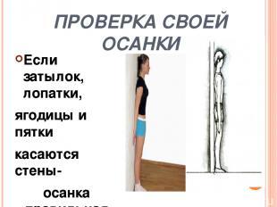 Признаки правильной осанки Голова и туловище держится а. наклонно; б.прямо; в.от