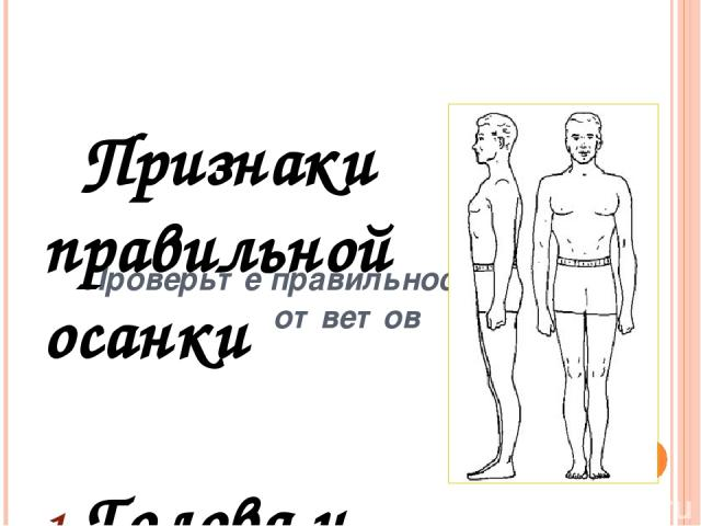 Признаки неправильной осанки голова выдвинута за продольную ось тела (опущенная голова); плечи сведены вперед, подняты (или асимметричное положение плеч); круглая спина, запавшая грудная клетка; живот выпячен, таз отставлен назад; излишне увеличен п…