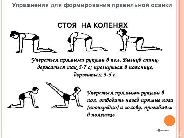 ЛЕЖА НА ЖИВОТЕ Упереться в пол согнутыми руками. Разгибая руки и не отрывая бедер от пола, запрокинуть голову назад, максимально прогнуться, держаться так 3-5 с, вернуться в и. п. Кисти рук соединить за спиной. Поднять голову, плечи и ноги; прогнуть…