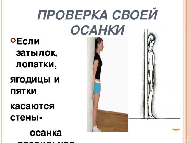 Признаки правильной осанки Голова и туловище держится а. наклонно; б.прямо; в.откинувшись назад 2. Слегка приподнята а. голова; б. рука; в. шея 3. Несколько отведены назад а. плечи; б.ноги; в.руки 4. Грудная клетка а. вогнута; б. развернута; в.выпук…