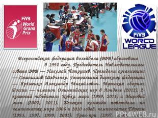 Всероссийская федерация волейбола (ВФВ) образована в 1992 году. Председатель Наб