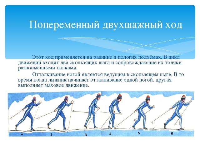 Попеременный двухшажный ход Этот ход применяется на равнине и пологих подъёмах. В цикл движений входят два скользящих шага и сопровождающие их толчки разноимёнными палками. Отталкивание ногой является ведущим в скользящем шаге. В то время когда лыжн…
