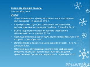 Сроки проведения проекта: 2-13 декабря 2013 г. Этапы: «Мозговой штурм» (формулир