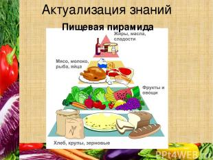Актуализация знаний Пищевая пирамида