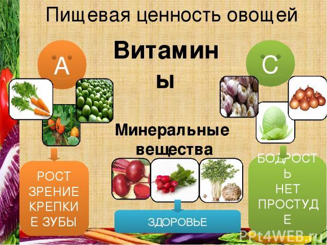 Пищевая ценность овощей С А Витамины Минеральные вещества РОСТ ЗРЕНИЕ КРЕПКИЕ ЗУБЫ БОДРОСТЬ НЕТ ПРОСТУДЕ ЗДОРОВЬЕ
