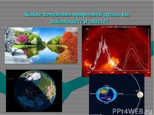 Какие изменения природной среды вы наблюдаете и знаете?