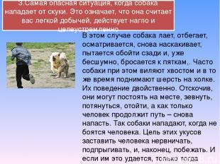3.Самая опасная ситуация, когда собака нападает от скуки. Это означает, что она