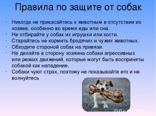 Правила по защите от собак Никогда не прикасайтесь к животным в отсутствии их хо