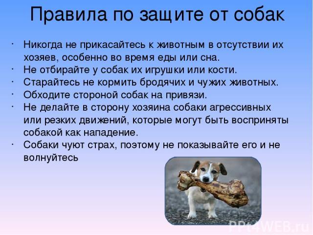 Правила по защите от собак Никогда не прикасайтесь к животным в отсутствии их хозяев, особенно во время еды или сна. Не отбирайте у собак их игрушки или кости. Старайтесь не кормить бродячих и чужих животных. Обходите стороной собак на привязи. Не д…