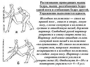 Растягивание приводящих мышц бедра, мышц разгибающих бедро одной ноги и сгибающи