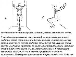 Растягивание больших грудных мышц, мышц-сгибателей плеча. В исходном положении с