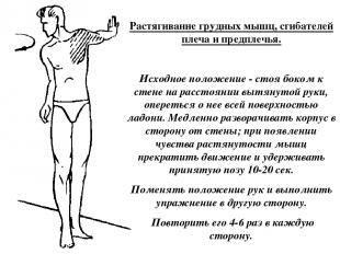 Растягивание грудных мышц, сгибателей плеча и предплечья. Исходное положение - с